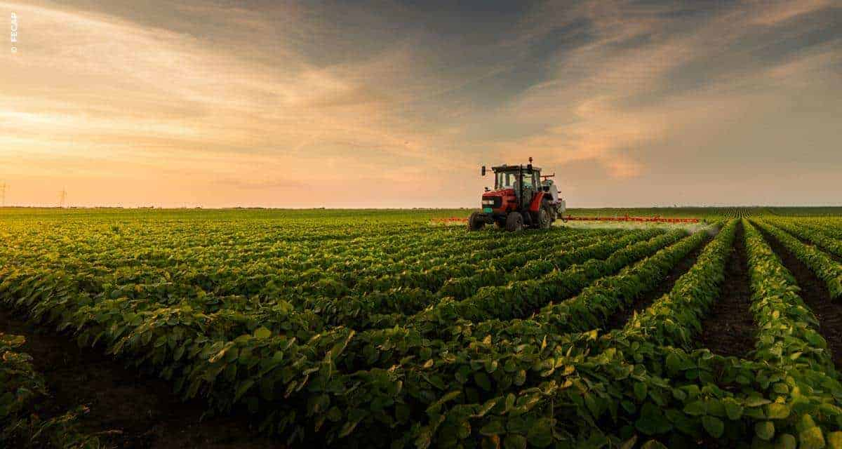 Exportações do agronegócio de Minas Gerais batem recordes